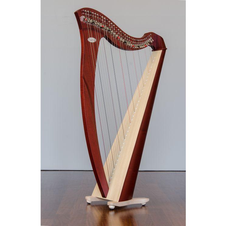keltische Harfe Salvi_0002.jpg