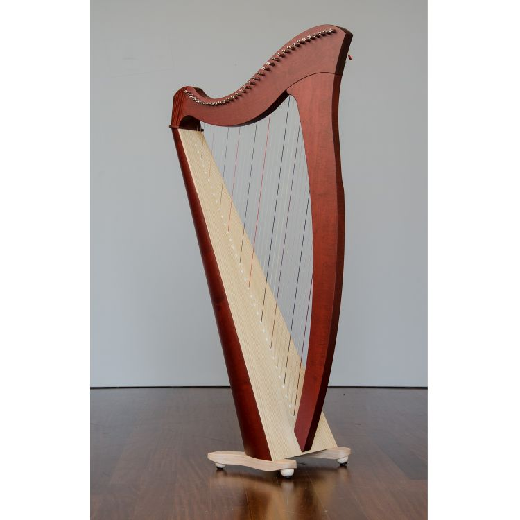 keltische Harfe Salvi_0003.jpg