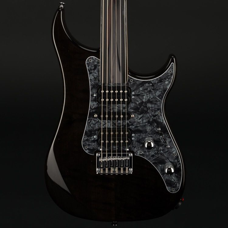 E-Gitarre Vigier_0003.jpg
